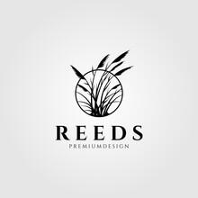Reeds Logo Vector Aquatic Plant Illustration Design
