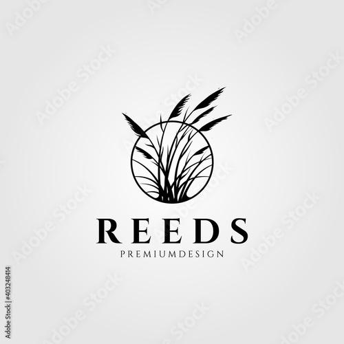Carta da parati reeds logo vector aquatic plant illustration design