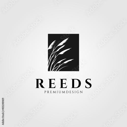 Fotomural reeds logo vector minimalist illustration design