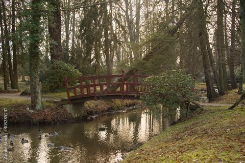 Obraz Park dworski w Iłowej. Drewniany mostek w stylu japońskim. nad rzeką Czerna Mała. - fototapety do salonu