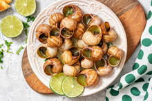 Escargots De Bourgogne. Snails With Butter, Herbs, And Garlic In A Plate Top View.