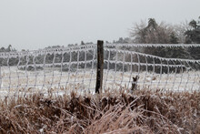 Ice Covers Wire Fence With Ice Icicles