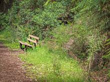 Bushland Seat