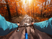 Cyclist On A Road Bike Rides In The Autumn Forest. First-person View.