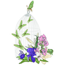 Vector Illustration Of A Cage With Butterflies And Flowers Freehand Drawing Of Decorative Cage  With Butterflies, Lily, Iris And Orchidea Flowers, Blank For Designers, Luxury Logo, Icon, Vintage