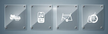 Set Bicycle Parking, Frame, Rental Mobile App And Shoes. Square Glass Panels. Vector.