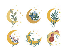 Magic Moon Collection. Vector Moon And Stars Boho Set. Celestial Graphic Elements With Flowers And Plants