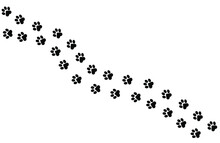 Paws Of A Cat, Dog, Puppy. Simple Animal Footprint Pattern For Bedding, Fabrics, Backgrounds, Websites, Postcards, Baby Prints, Brown Paper. Vector Illustration.