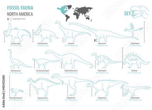Fotografie, Obraz Fossil fauna of North America