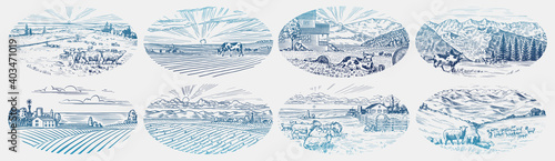 Fototapeta Rural meadow set. A village landscape with cows, goats and lamb, hills and a farm. Sunny scenic country view. Hand drawn engraved sketch. Vintage rustic banner for wooden sign or badge or label. obraz
