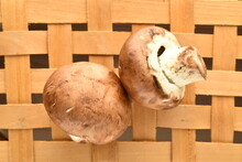 Two Organic Fresh, Cream Mushrooms On A Wicker Mat, Close-up.
