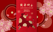 Happy Lunar New Year 2021, The Year Of Ox Decorated With Oriental Fan And Cherry Blossom Flowers. Elegant Style Banner. Chinese Text Means: Happy New Year.