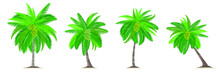 Coconut Trees With Shadow Isolated On White. Vector Illustration