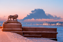 The Lion Sculpture In Bronze At The Admiralty Embankment And Kunstkamera At Night In Saint Petersburg, Russia.