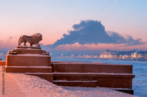 Photo The lion sculpture in bronze at the Admiralty embankment and Kunstkamera at night in Saint Petersburg, Russia