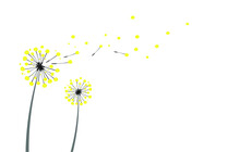 Two Yellow Dandelions On A White Background In The Wind. Space For Copy Space And Greeting Card. Vector Graphics