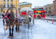 In Winter, Brown Horse Harnessed To A Historic Carriage Stands On A City Street With A Tourist Bus