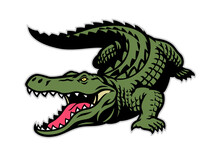 Crocodile Mascot In Whole Body