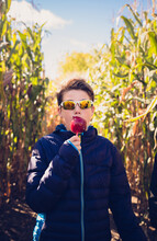 Teen Boy In Sunglasses Eating Candy Apple In Corn Maze On A Fall Day.