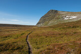 Narrow single track trail of middle section of Kungsleden Trail through mountain landscape, Lapland, Sweden