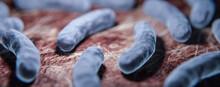 Legionellen Bakterien Im Körper - 3D Visualsierung Unter Dem Mikroskop