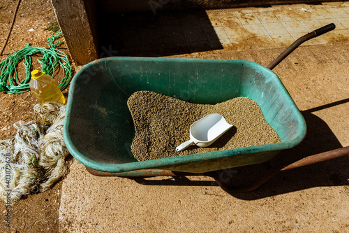 Shot of an old barrow with building material in it and a white shovel Wallpaper Mural