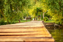 Wooden, Old Bridge, Standing On The Water And Going To The Shore With Coastal Trees, The Photo Is Stylized As An Oil Painting.