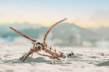 Selective Focus Shot Of A Rustic Anchor Of A Small Boat On A San