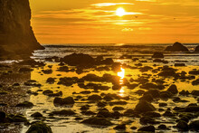 Colorful Yellow Haystack Rock Low Tide Pools Canon Beach Oregon