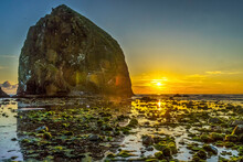 Colorful Yellow Haystack Rock Low Tide Pools Canon Beach Oregon