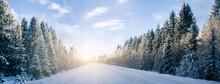 Winter Road Panorama
