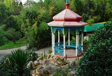 Decorative Chinese Gazebo In The Nikitsky Botanical Garden. Dense Subtropical Vegetation