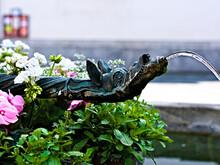 Nahaufnahme Eines Wasserhahns Mit Tiermotiv An Einem Brunnen (Barfüsserbrunnen Am Franziskanerplatz) Mit Trinkwasser In Der Altstadt Von Luzern, Schweiz