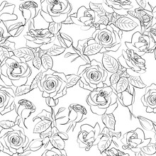 Seamless Background With Leaves, Flowers. Line Drawing. Lines Have Different Widths. Black White. Roses.
