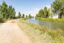 Dirt Road Along The Canal De Castilla, North Canal Next To Fromista, Province Of Palencia, Castile And Leon, Spain