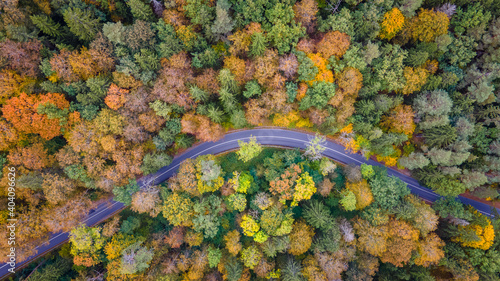 Canvas Top down view of twisty road in the middle of the forest in autumn by drone