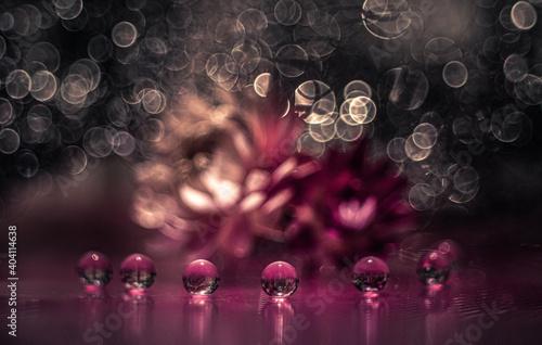 Obraz Jesienna impresja - kulki wodne - fototapety do salonu