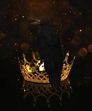 Fantasy World. Black Crow Sitting On Golden Crown, Bokeh Effect