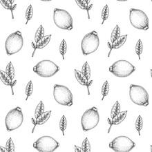 Hand Drawn Lemon Seamless Pattern. Vector Illustration In Sketch Style