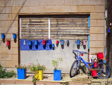 Multi Colored Potted Plants And Bicycle Against Wall