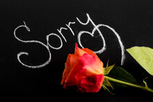 Inscription In White Chalk On A Black Board, Sorry And A Rose Flower. The Concept Of An Apology, From The Heart To Ask For Forgiveness. Copy Space