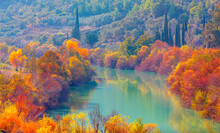 Colorful Majestic Goksu River In National Park With Autumn Forest - Mersin, Turkey