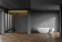 Gray Bathroom Interior With Tub And Shower