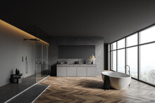 Gray Bathroom Interior With Sink, Shower And Tub