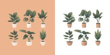 Vector Illustration Set Of Indoor Plants With Beautiful Gradient. Most Popular Houseplants Such As Fiddle-leaf Fig, Monsterra, Elephant Ears, Bird Of Paradise, Rubber Plant, And Snake Plant.