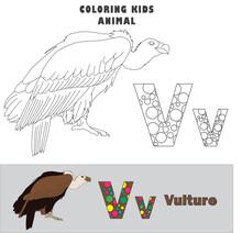 Letter V Vulture Animal Coloring Kids