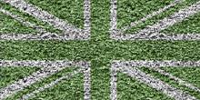 Green Union Jack Flag Drawn On The Foliage Wall