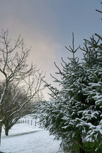 At 900ft, Snowfall Covers Smallholding On North Yorkshire Dales