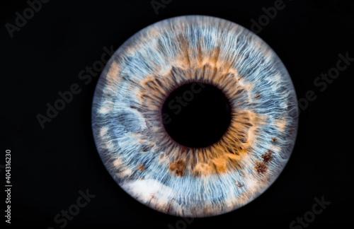 Obraz blue eye - fototapety do salonu
