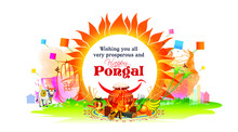 Illustration Of Happy Pongal Festival Celebration And Typography Text